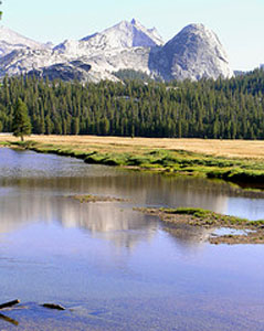 Beautiful view from the Dana fork of the Tuolumne River.