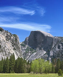 Half Dome: The hike is worth every step!