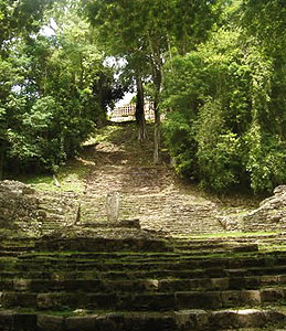 """A dramatic stone staircase leads up to the Great Acropolis, site of Edifice 33, """"The Palace of the King,"""" erected in honor of Bird Jaguar IV."""