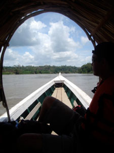 Palm thatch shields us from the tropical sun as we head down the Usumacinta River, which separates Mexico and Guatemala. The boat trip down river to the ruins takes about forty-five minutes. The return trip, against the current, can take an hour.