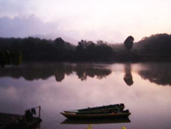 Early morning mist rises off the Kinabatangan