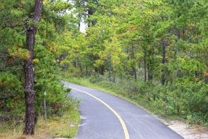 The Province Lands Trail
