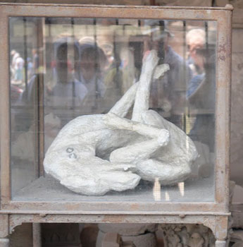 The plaster cast of a dog in Pompeii.