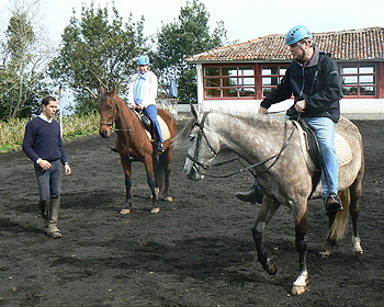 Riding horses in the Azores.
