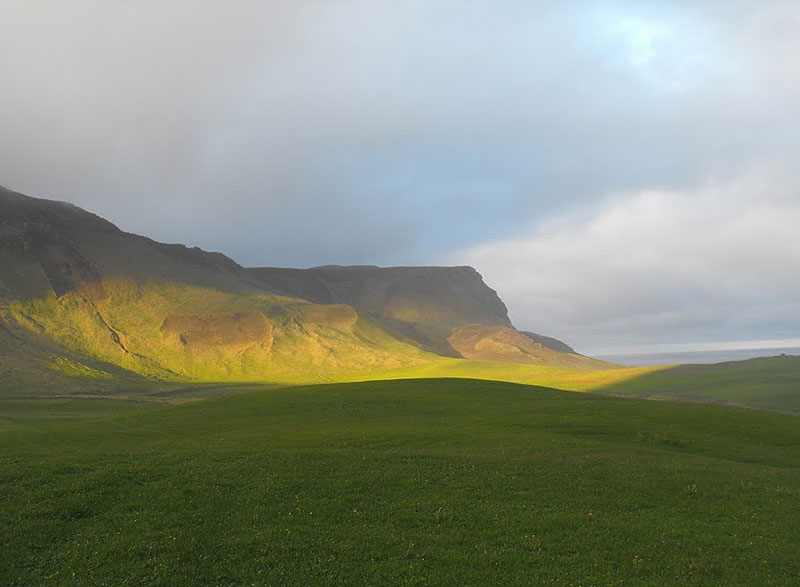 Sun on the cliffs near Vik, Iceland