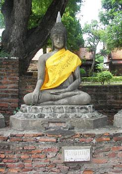 Families maintain the Buddhas at Wat Yai Chaimongkon.