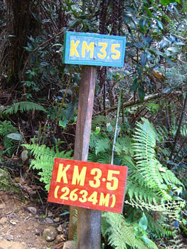 Distance markers line the trail upwards.