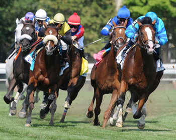 Down the home stretch at Saratoga. Photo: New York Racing Association