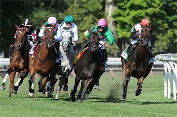 Racing on the track. photo NYRA.