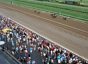 Saratoga Race Track. Photo by Sony Stark.