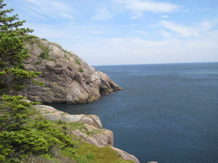 View from the East Coast Trail in Newfoundland