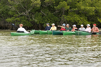 Paddlers share a wildlife sighting in the mangroves on a guided kayak tour at J.N. 'Ding' Darling National Wildlife Refuge in Florida.