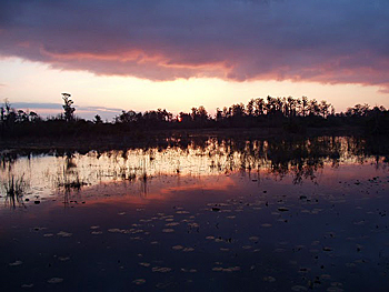 Sunset at the Okefenokee National Wildlife Refuge