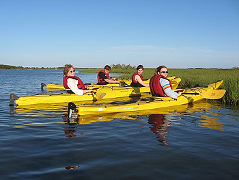 A group of kayakers take a break from paddling a four-mile loop of the Chincoteague National Wildlife Refuge in Virginia.