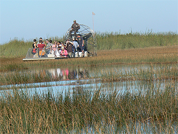 Airboat ride with Gator Park Airboat Tours, Everglades Florida. photo by Max Hartshorne.