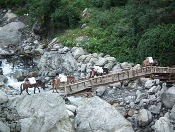A cantilevered bridge