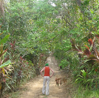 There are 12 km of trails on Isla Boca Brava