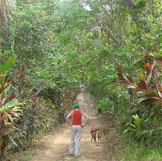 There are 12 km of trails on Isla Boca Brava