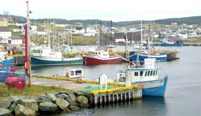 Fishing vessels in the Bonavista Newfoundland harbor.
