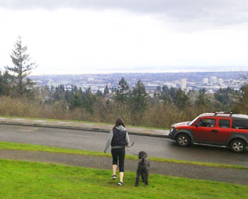 The view from Council Crest. Photos by Mark Stevenson.