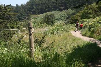 Hiking along the Lands End Trail in San Francisco. Christina Lalanne photos.