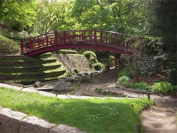 The garden of the Albert Kahn Musem in Paris.