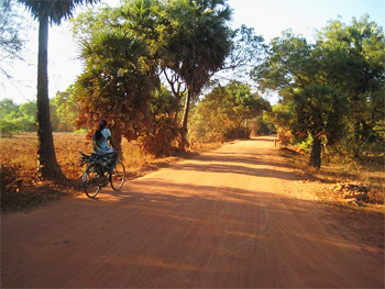 Auroville Roads