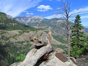 Bear Creek trail.