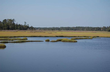 South Carolina: Paddleboarding To The Barrier Islands