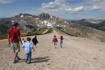Summer in Jackson Hole, Wyoming