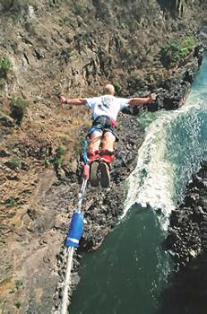 Bungee-jump over the 300 ft. drop over Victoria Falls.