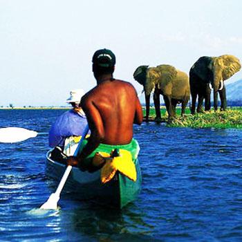 Go on a canoe safari in Mana Pools National Park.
