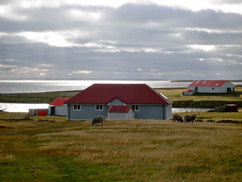 Falklands ranch and guest house.