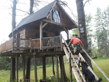 Allan Manning's treehouse that he rents out to guests.