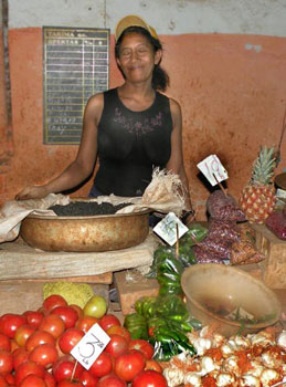 A food vendor in Havana