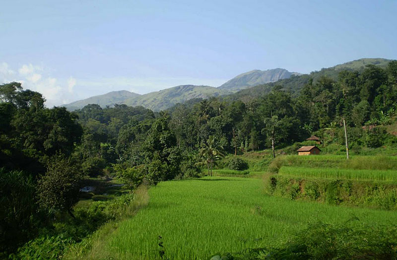 A slice of the district, greenest fields, quaint little huts with mountains overlooking them