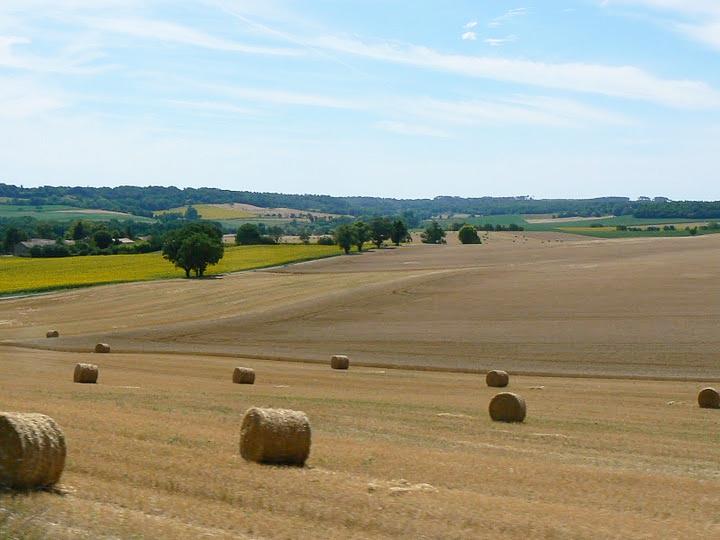 Southwestern France's rolling farmland near the Dordogne River.