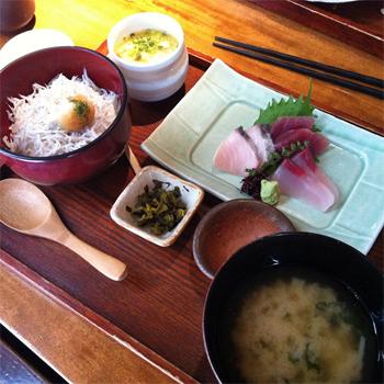 Hikari lunch.