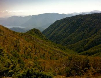 Mae-Shirane San, Nikko National Park