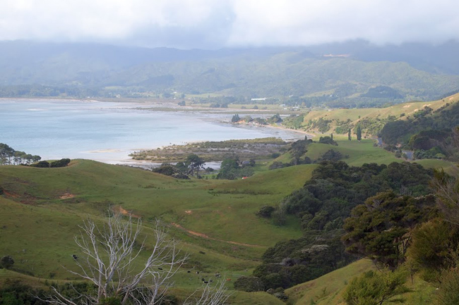 View from the road to Coromandel Town.