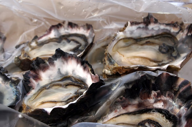 Oysters are a Coromandel specialty...perfectly fresh, briny and delicious, from a roadside stand.