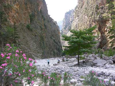 The gorge at Samaria
