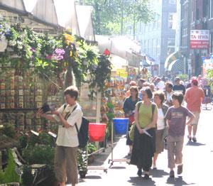 Flower market in Amsterdam. photo by Shady Hartshorne.