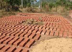 Mud bricks drying