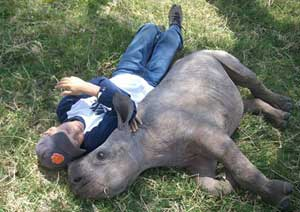 A boy relaxes with a baby rhino - photo courtesy of Elevate Destinations