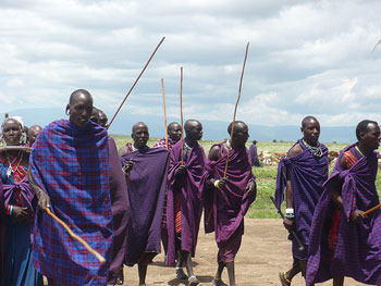 Masai men with their shuka and clubs