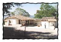 Photo Courtesy of Hacienda San Lucas