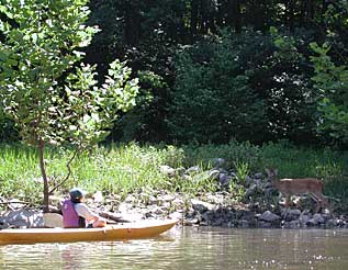 Maryland is a paradise for paddlers. Mary Burnham photos.