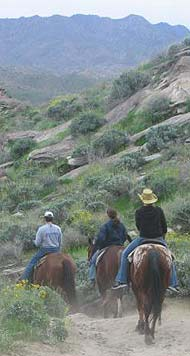Riding with Smoke Creek Stables in Andreas Canyon.