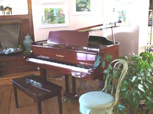 Music is a huge part of Chautauqua County. This piano invites guests to tickle its keys inside The Spencer hotel, but there are plenty of venues where professionals make the music for you.